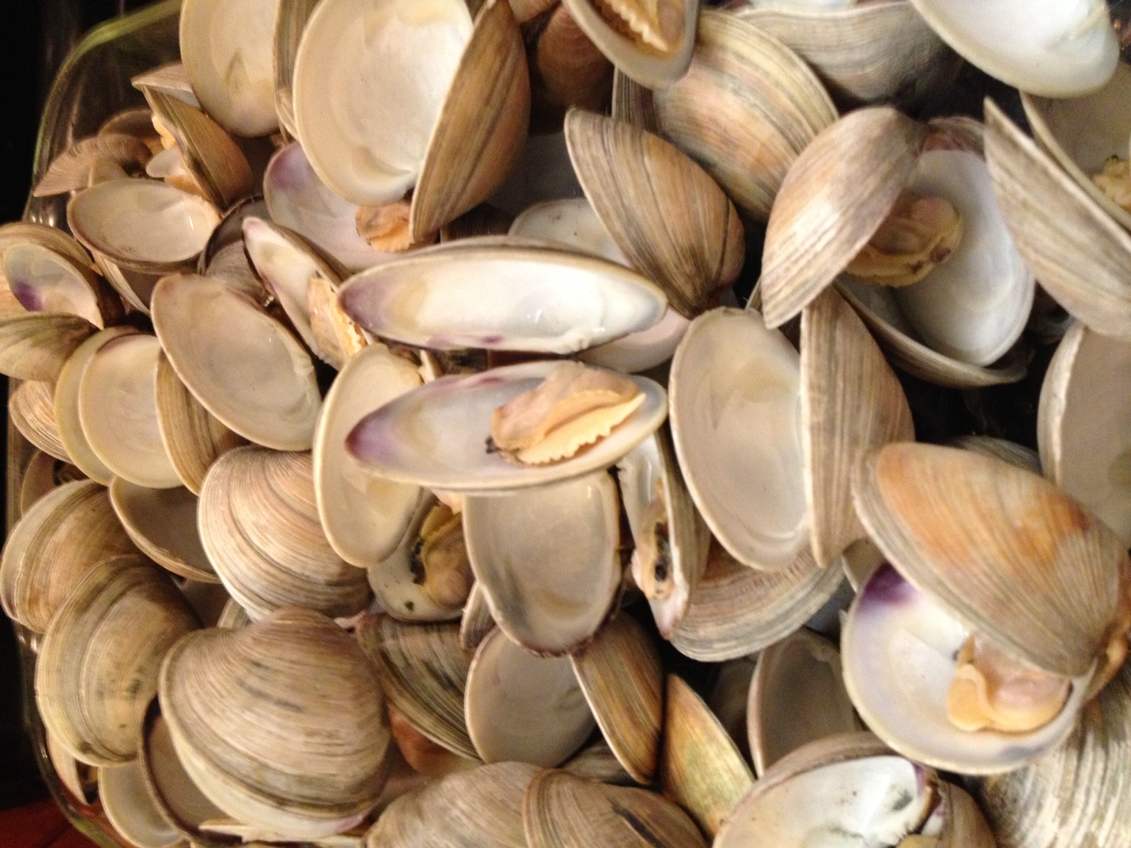 how to cook large clams