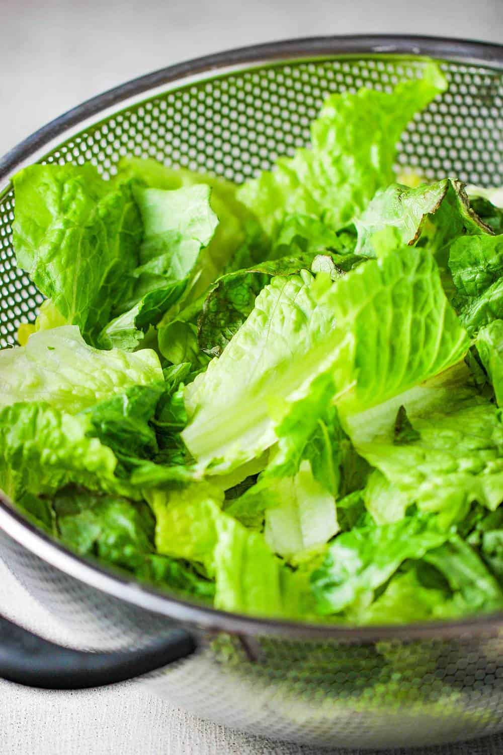 Torn pieces of lettuce in a colander for Caesar's salad
