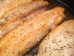 tilapia fillets being sauteed