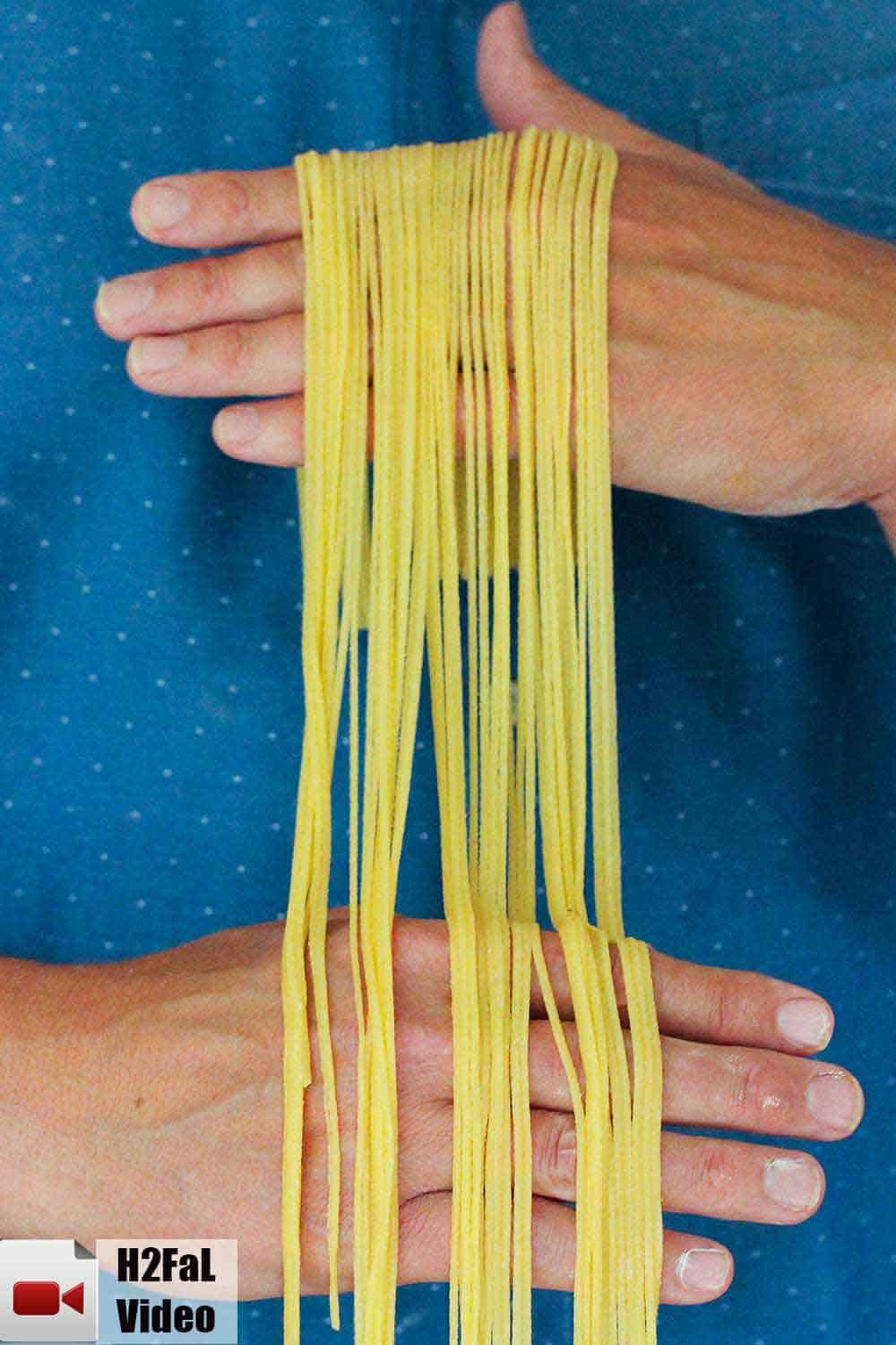 Two hands holding homemade pasta.