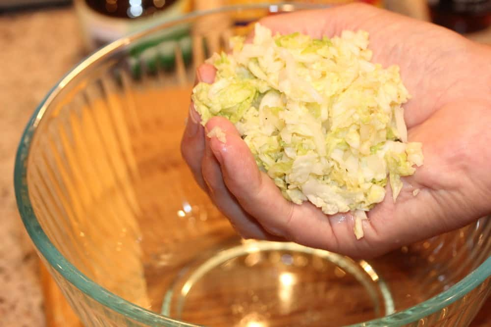 Squeeze excess water from the cabbage after s30 mins with the salt