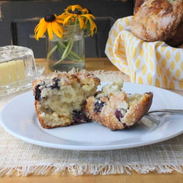 white chocolate blueberry muffin