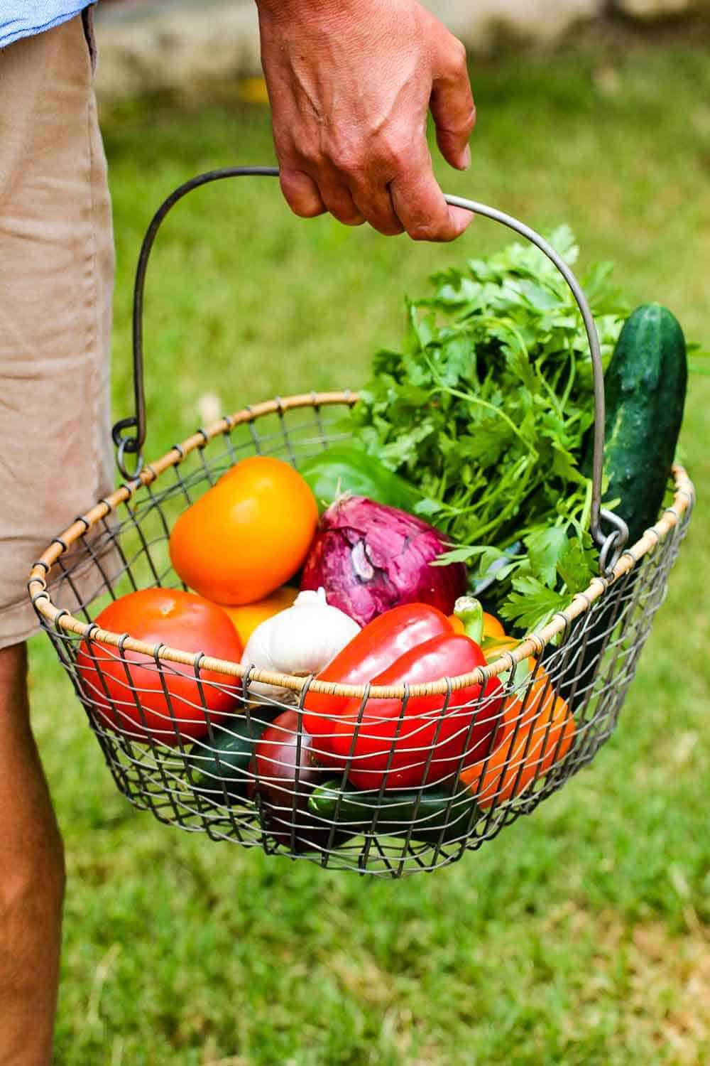 Seek out produce from a farmer's market and place in a basket.