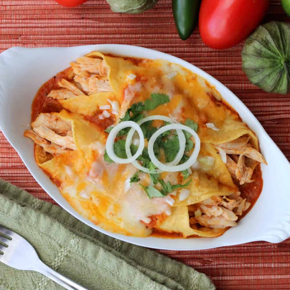 Roasted Turkey Enchiladas
