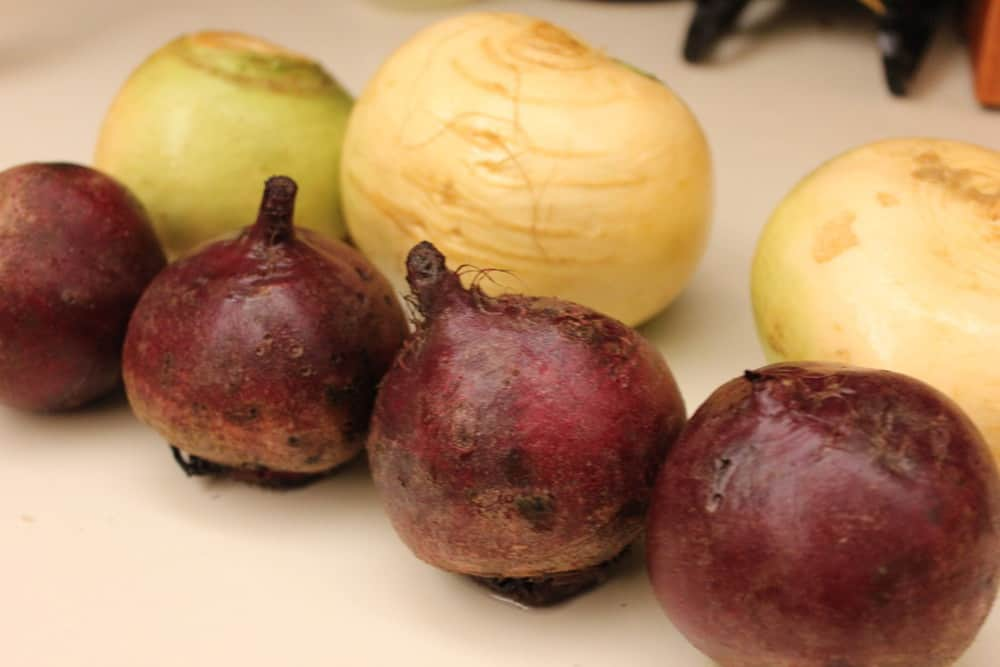 Wonderful red and golden beets!