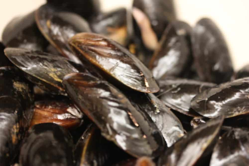 PEI mussels are great...scrubbed and beards removed!