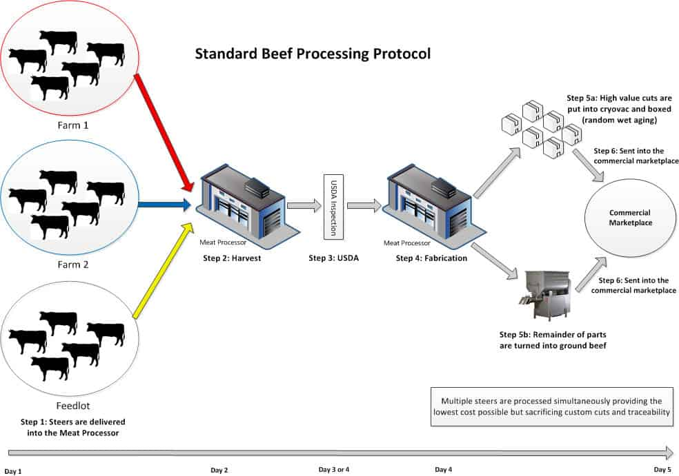 Standard Beef Process Protocol