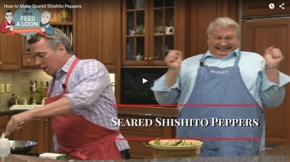 Seared Shishito Peppers