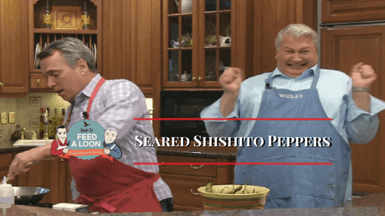 Seared Shishito Peppers