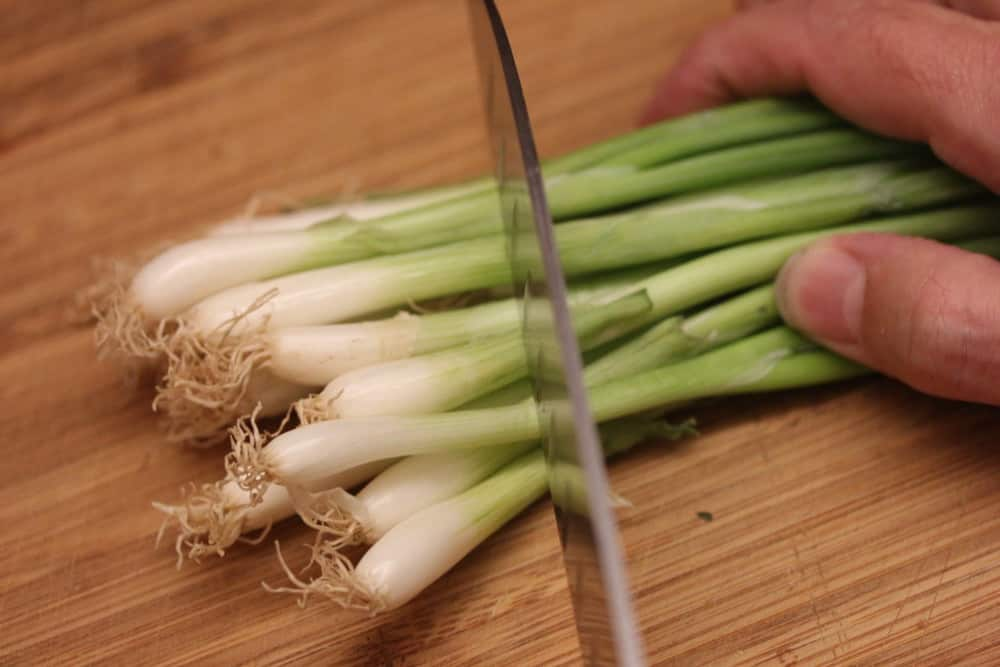 Scallions give such a subtle yet vibrant flavor to the dressing