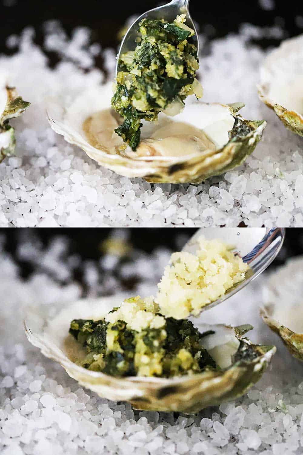 A spoon transferring a spinach mixture on top of an oyster in a shell, and then breadcrumbs being sprinkled on top.