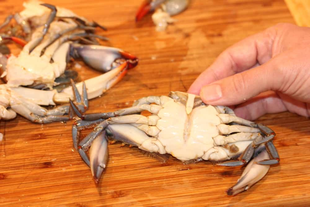 Gulf Blue Crab is just the best