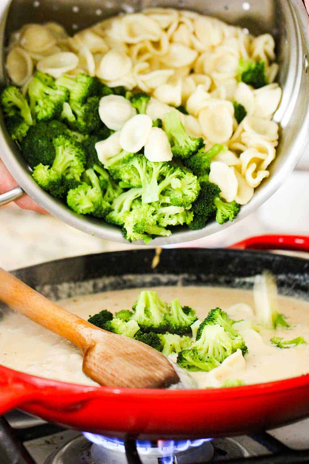 A pot full of cooked pasta shells and broccoli florets being transferred into a skillet with alfredo sauce.