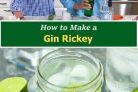 How to make a Gin-Rickey
