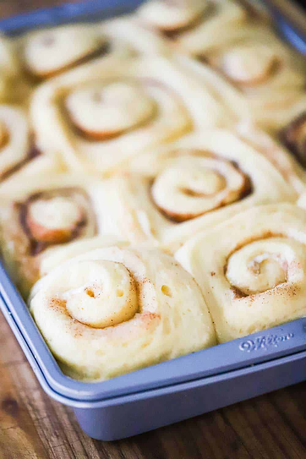 A metal baking pan filled with uncooked cinnamon rolls that have risen from a second round of proofing.