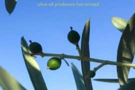 Rancho Azul y Oro feature story