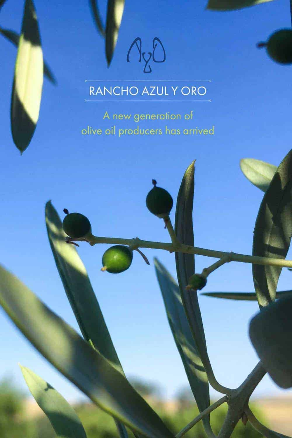 Rancho Azul y Oro feature story
