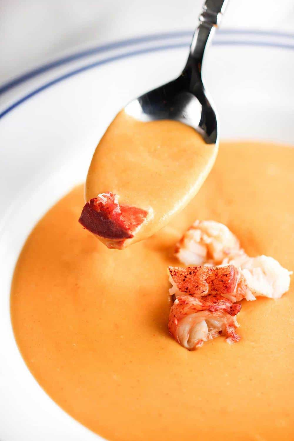 Lobster Bisque Fish Stock | Lobster House