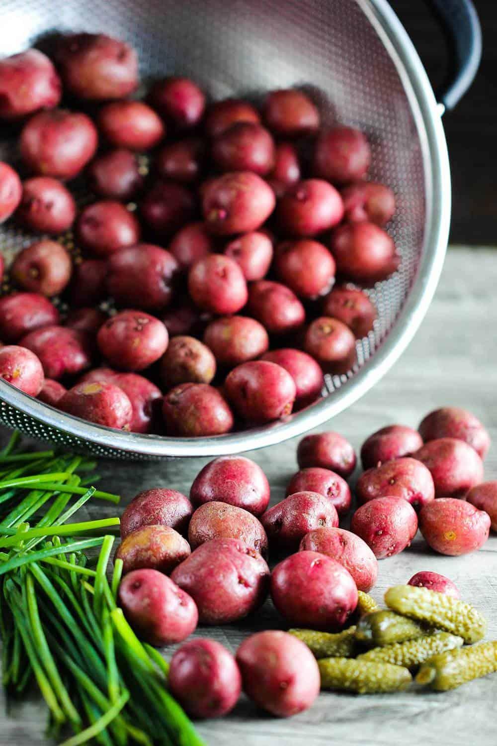 Warm Potato Salad recipe
