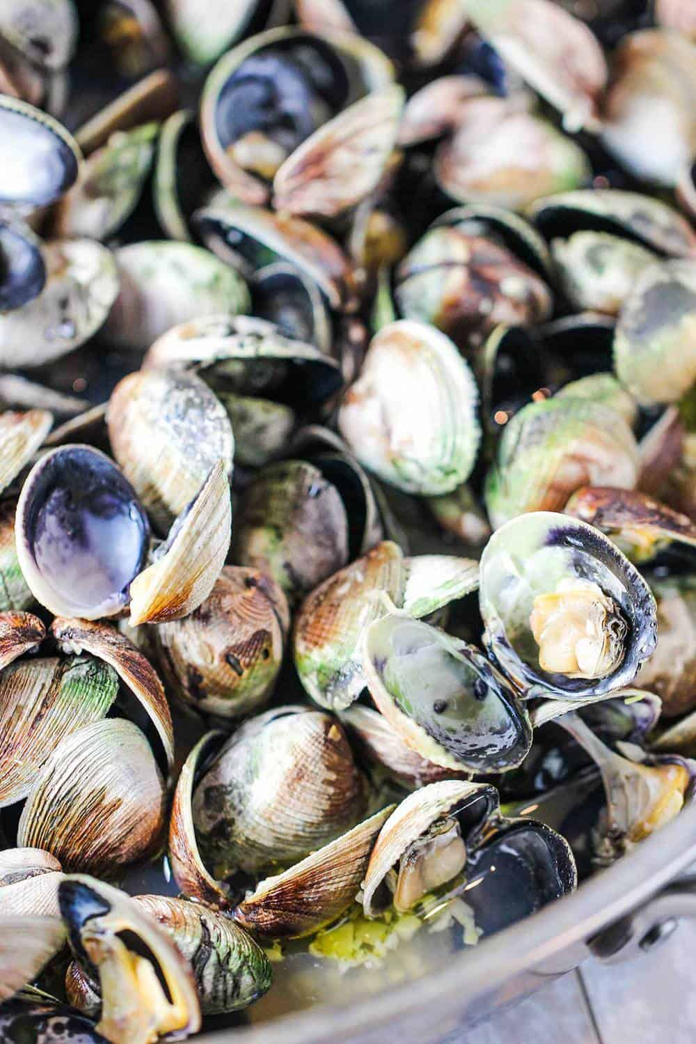 Small clams that have been steamed in a large pot and have opened.