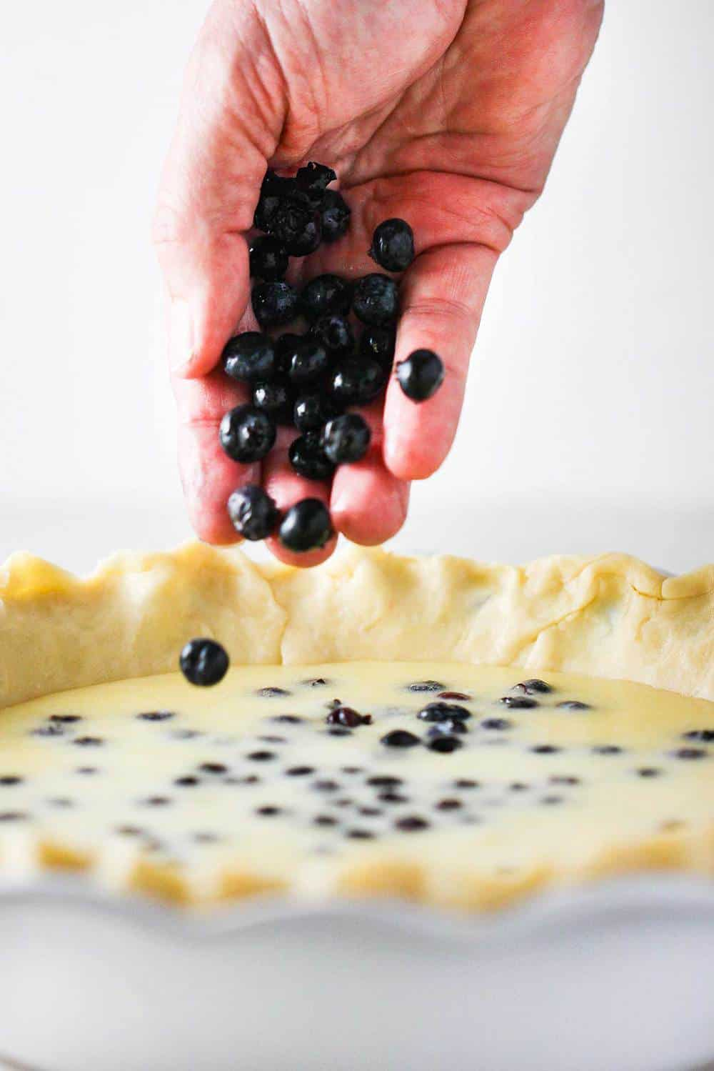 A hand dropping blueberries into a custard pie.