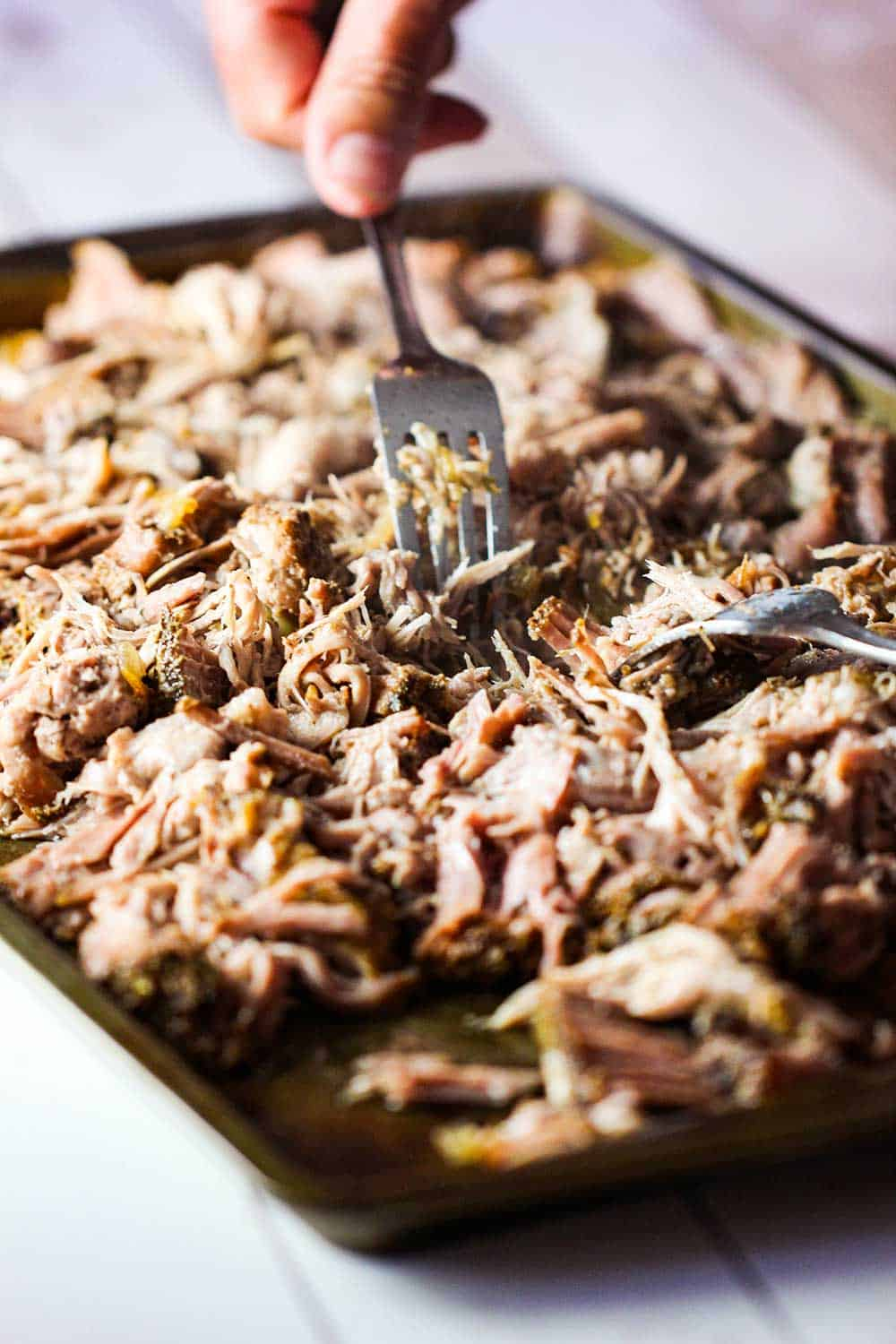 Use two forks to shred the cooked pork apart for carnitas tacos.