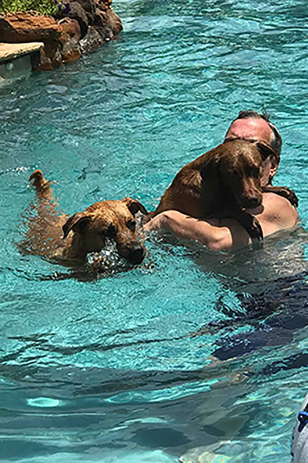 Keep an active lifestyle, like swimming with your pets.