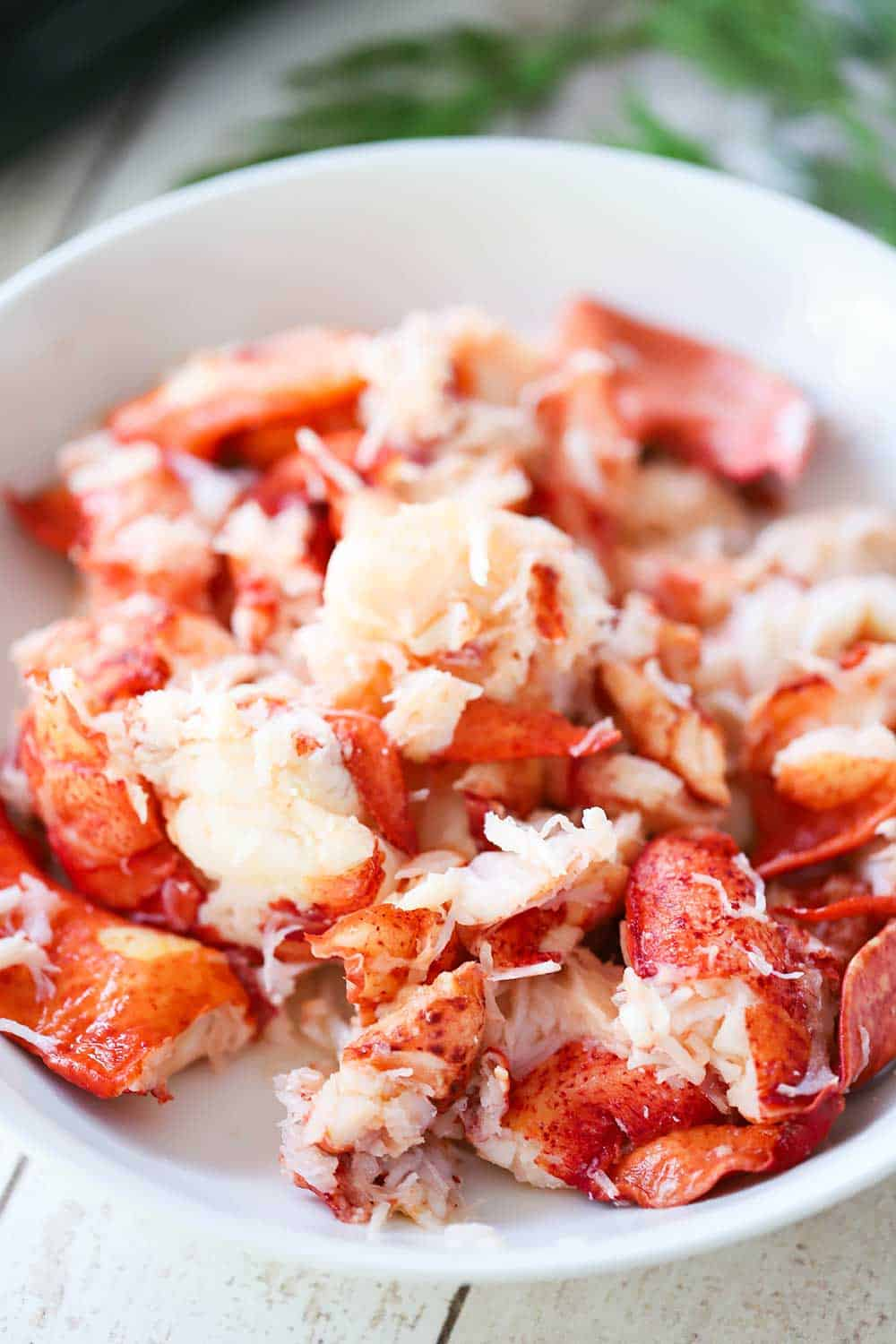 A white serving bowl filled with fresh lobster, roughly chopped.