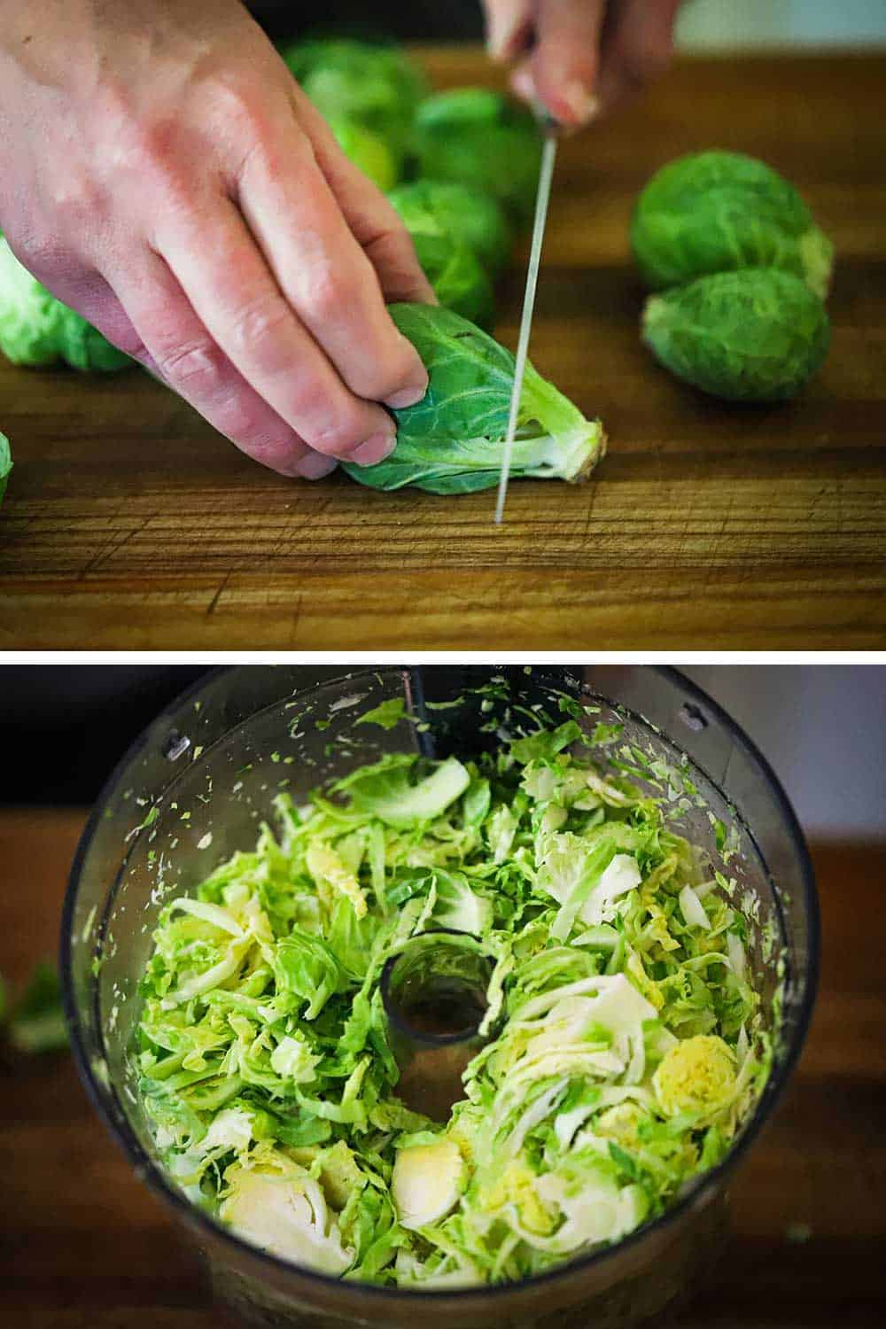 A person using a knife to cut the end off of a Brussels sprout and then a the bowl of a food processor filled with shaved sprouts.