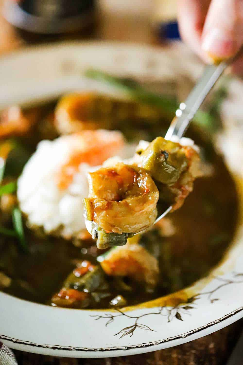A spoon being held up holding a helping of shrimp and okra gumbo over a bowl of the same.